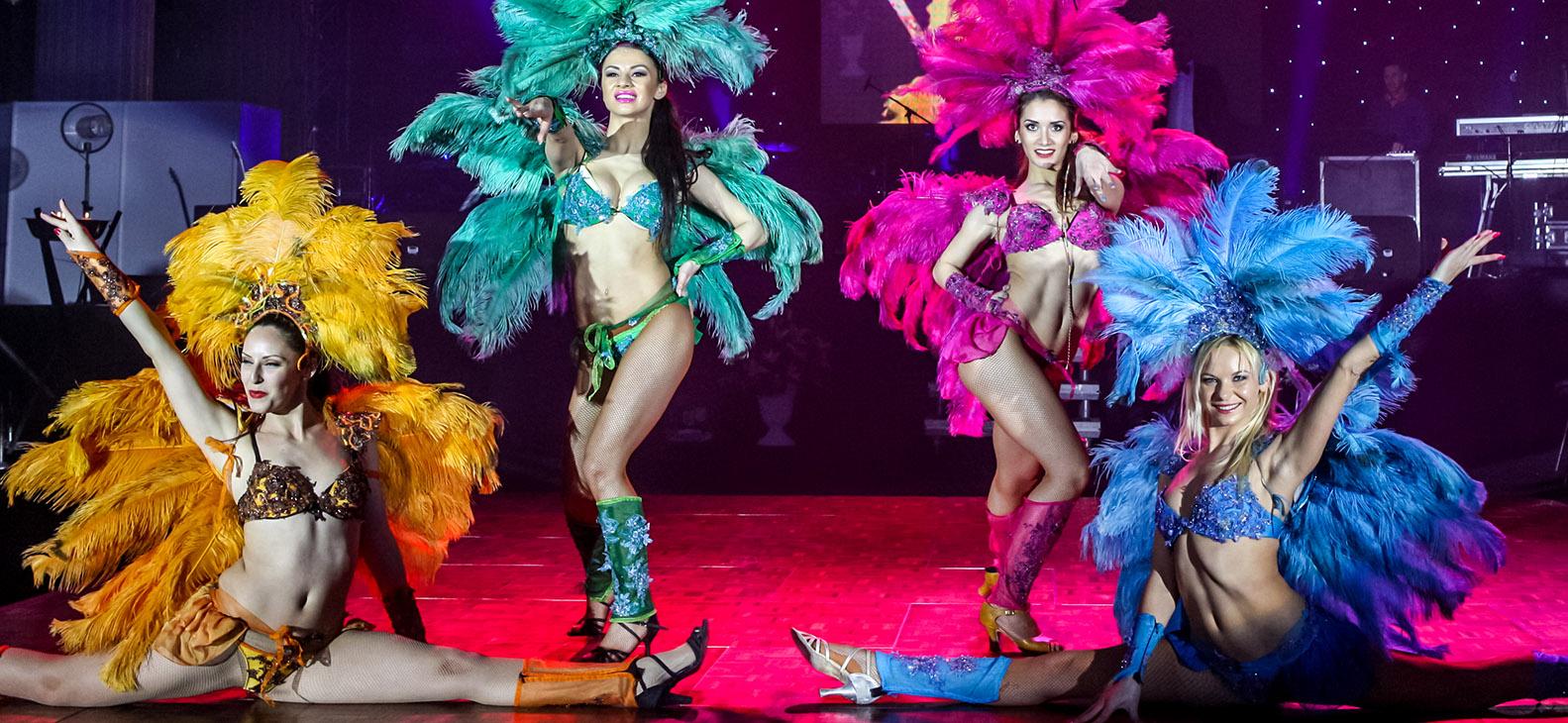 wilmark-dance-show